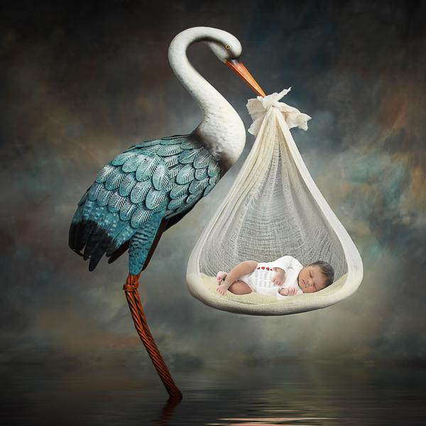 geboortekaartjes, geboortekaarten, geboortekaart