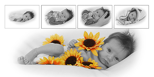 fotograaf babyfoto's