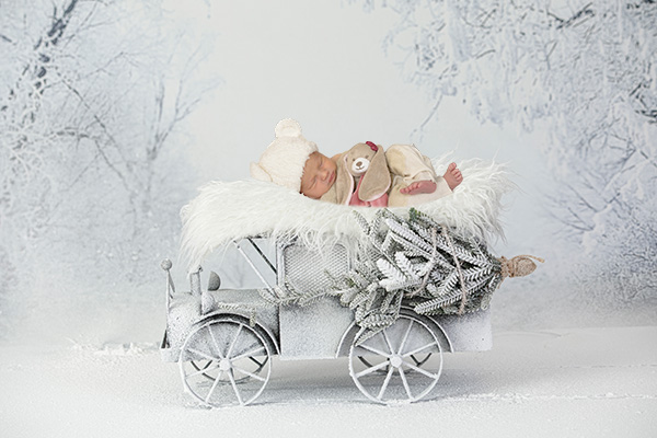 newborn fotografie winter