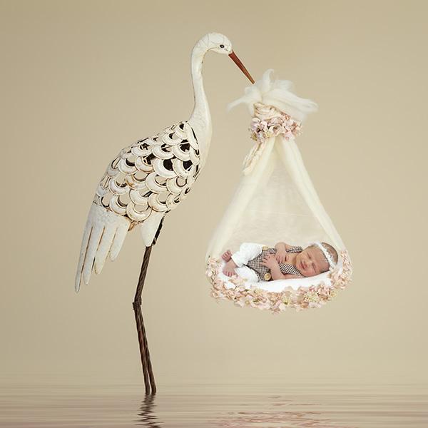 newbprn fotograaf geboortekaartjes