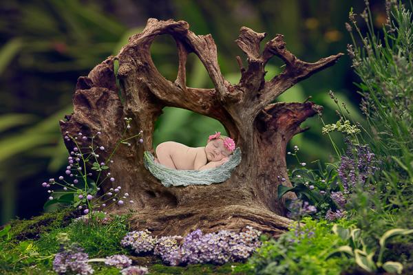fotoshoot pasgeboren baby